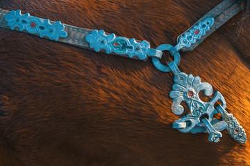 Harness of Mongolian horses.