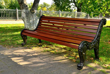 Beautiful colorful autumn park in sunny day. Bench in the park.