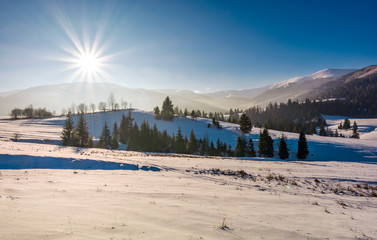 sun burst over the beautiful winter landscape. stunning scenery in Carpathian mountains