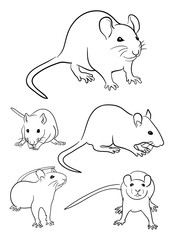 Mice line art 02. Good use for symbol, logo, web icon, mascot, sign, or any design you want.