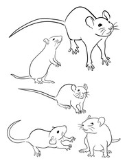 Mice line art 03. Good use for symbol, logo, web icon, mascot, sign, or any design you want.