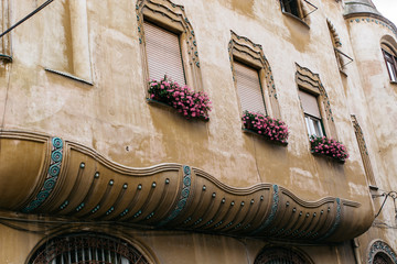 Pink flowers at the windows of an old building in Romania