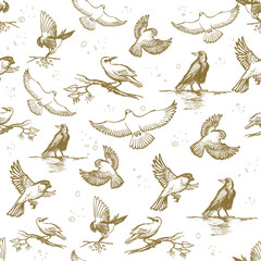 Vintage seamless pattern with hand drawn birds