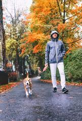 Man walk with dog by autumn street