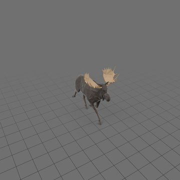 Stylized moose running