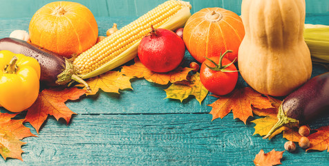 Toned photo of autumn leaves, pumpkins, tomato, pomegranate, corn