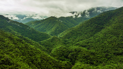 An aerial view of  forest and Mountain