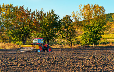 Fototapete - Farmer with tractor seeding - sowing crops at agricultural fields in autumn.