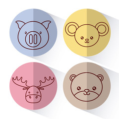 cute animals icon set over colorful circles and white background colorful design vector illustration