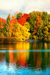Beautiful autumn park with colourful leaves, trees and lake. Autumn Landscape.Park in Autumn. Forest in October.