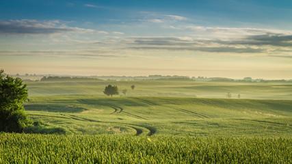 Acrylic Prints Village Stunning dawn at foggy field in summer