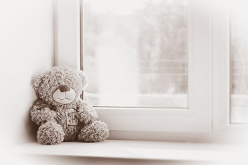 Toy bear at a window