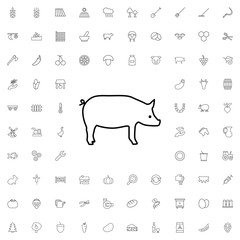 Pig icon. set of outline agriculture icons.