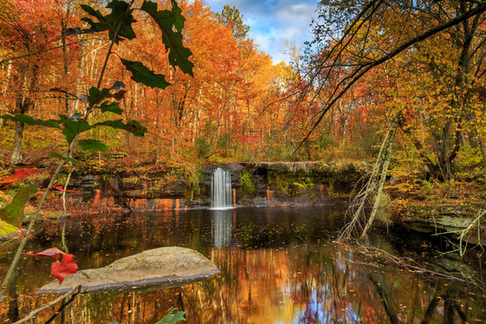 Autumn at Banning State Park