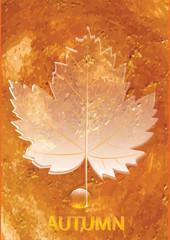 autumn original orange watercolor background - grunge style - sheet semi-transparent - drop of dew - art creative vector