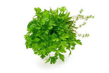 Parsley, Celery, Sage, Thyme, fresh leaves isolated on white background