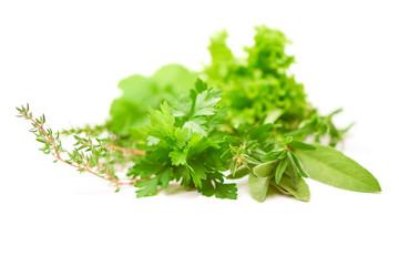 Parsley, Celery, Sage, Thyme, Lettuce leaf, fresh leaves isolated on white background