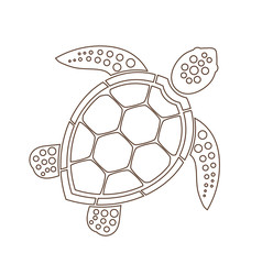 Sea turtle line icon