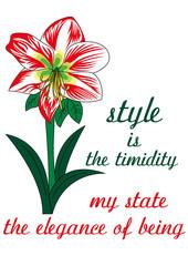 amarillis fiore significato inglese