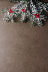 Christmas tree branch cranberries. Dark gray stone background.