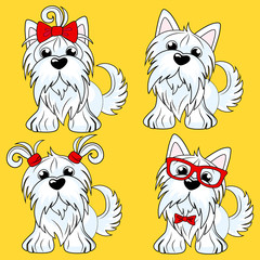 Set cartoon character yorkshire terrier dog poses. Sketch Funny dog Yorkshire terrier breed sitting. Hand drawing, vector illustration isolated on background