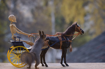 squirrel with horse and a skeleton  on a coach