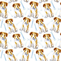 Seamless pattern of a dog, paw and bone.Jack Russell Terrier. Domestic pet.Watercolor hand drawn illustration.White background.