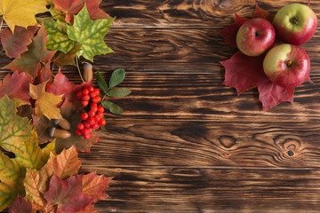 autumn, red, yellow leaves on wooden table (background) with apples and red ash.