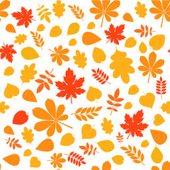 colored autumn pattern