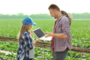 Two farmers with laptop in field