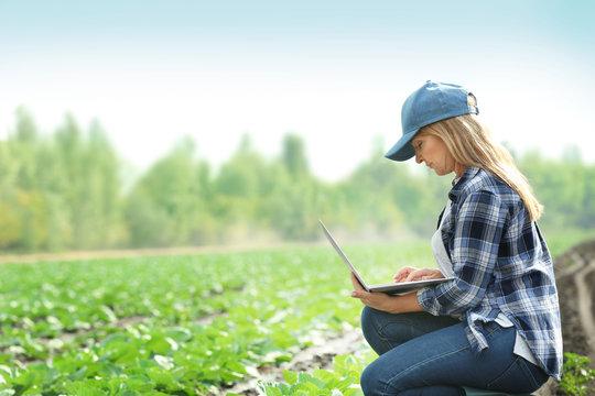 Female farmer with laptop in field