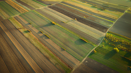 Crop field in autumn. On top.