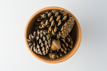 Clay Pot of Pinecones on White Background Top View