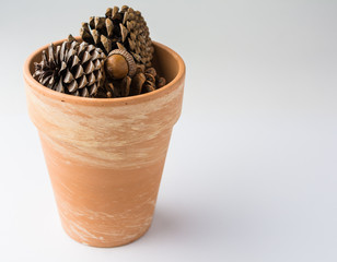 Clay Pot of Pinecones on White Background with Copy Space