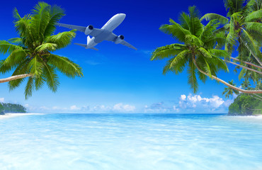 3D airplane flying over a tropical beach.