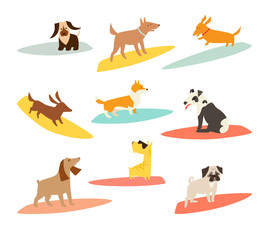 Dog surfers set, vector cartoon illustrations. Dogs breeds on surfboard. Funny Cute dogs. Isolated on white