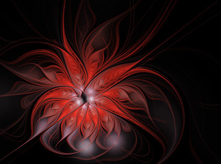 Abstract red flower on a black background. Fractal