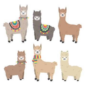 Cute llama and alpaca set. Cartoon character vector illustration.Funny smiling animals.