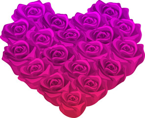 Pink and Purple Rose Heart