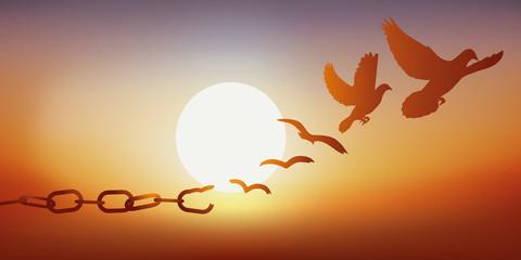Concept de la liberté retrouvée, avec des chaînes qui se brisent et se transforment en une colombe qui s'envole au coucher du soleil.