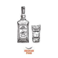 Vintage vector hand drawn JMexican food sketch Illustration.