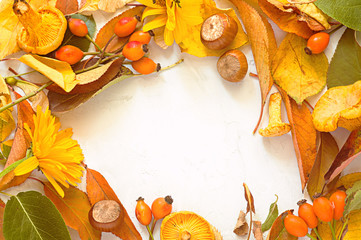 Circle frame with autumn leaves on white background. Fall