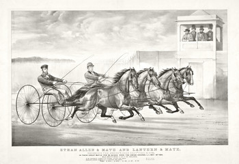 Old illustration of a trotting horse chariots. By Cameron, publ, in New York, ca. 1870
