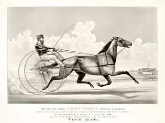 Old illustration of a trotting horse (George Palmer driven by C. Champlin). By Cameron, publ, in New York, ca. 1870