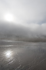 Yellowstone National Park & Fog