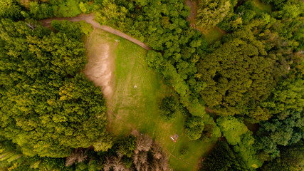 Top view of the lawn in the middle of the forest.