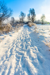 Magical winter landscape with snow in countryside, sun and blue sky, white christmas concept