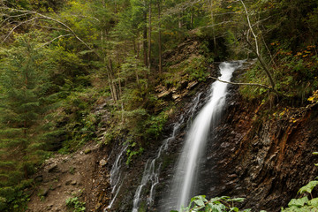 The beautiful waterfall in forest, long exposure in Carpathian mountains