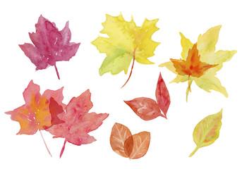 紅葉 いろいろな秋の葉っぱ 水彩イラスト