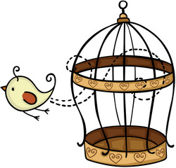 Bird flying from cage